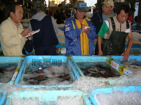 Tsukijiauction